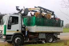 Camion con pinza